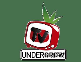 UNDERGROW-2